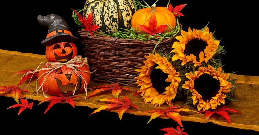 Dekoracja ogrodu na Halloween – co zrobić, żeby było ładnie i… trochę strasznie
