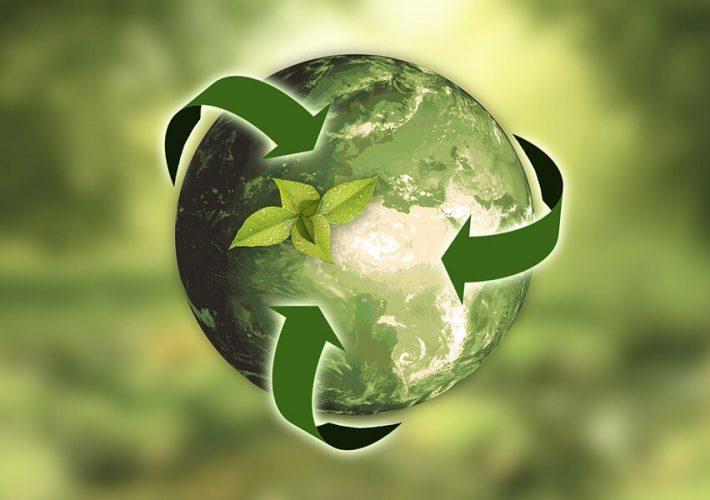Segregacja odpadów - co i gdzie wrzucać?
